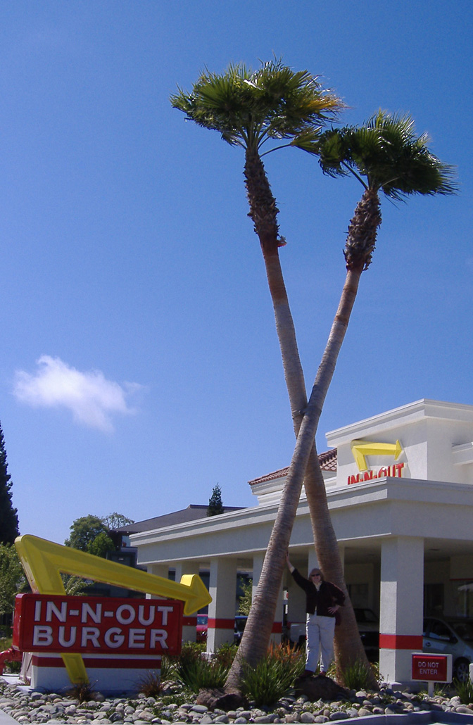 BTS In-N-Out 6-10-2010